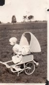 """Trying to escape from the """"girly"""" buggy!  I think he's wearing a dress too!"""