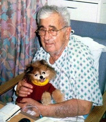 Dr. Robert K. Avakian photos